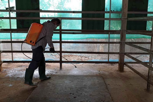 Disinfecting stables
